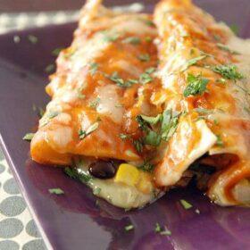 The Best Vegetable Enchiladas