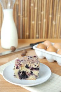 BlueberryBuckle1