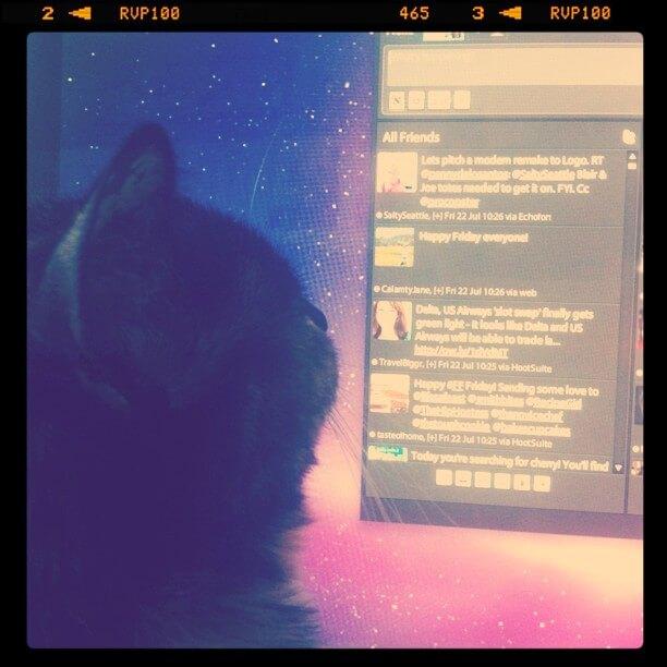 Bobbi reading tweets on twitter