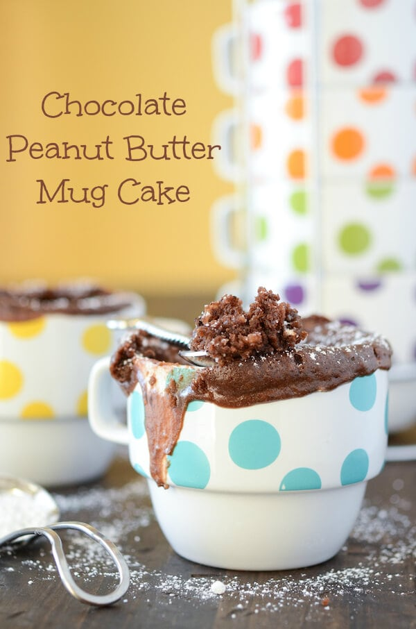 Chocolate Peanut Butter Mug Cake from thenovicechefblog.com
