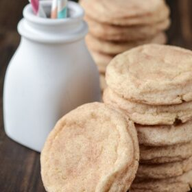 Classic Snickerdoodle Cookies recipe via www.thenovicechefblog.com
