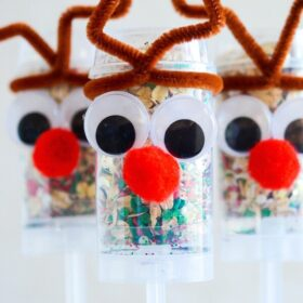Reindeer Food in push up pops! Spread this reindeer food around your lawn on Christmas Eve with the kids to help Santa and Rudolph find your home!